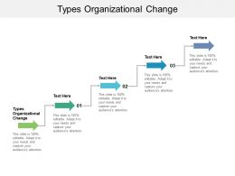 Types Organizational Change Ppt Powerpoint Presentation Professional Backgrounds Cpb