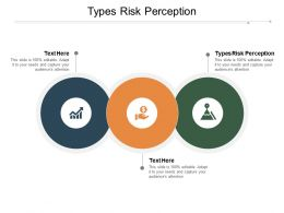 Types Risk Perception Ppt Powerpoint Presentation File Show Cpb