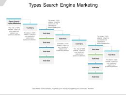 Types Search Engine Marketing Ppt Powerpoint Presentation Graphics Cpb