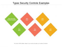 Types Security Controls Examples Ppt Powerpoint Presentation Styles Templates Cpb