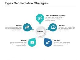 Types Segmentation Strategies Ppt Powerpoint Presentation Information Cpb