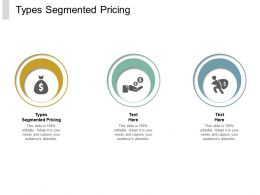 Types Segmented Pricing Ppt Powerpoint Presentation Model Show Cpb