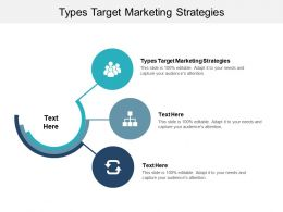 Types Target Marketing Strategies Ppt Powerpoint Presentation Show Ideas Cpb