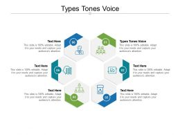 Types Tones Voice Ppt Powerpoint Presentation Professional Graphics Design Cpb