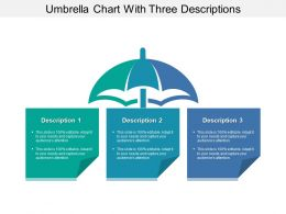 Umbrella Chart With Three Descriptions