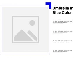 Umbrella In Blue Color