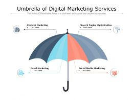 Umbrella Of Digital Marketing Services