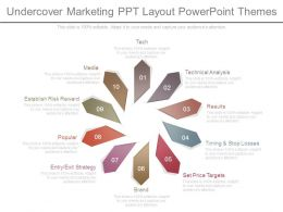Undercover Marketing Ppt Layout Powerpoint Themes