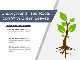 Underground Tree Roots Icon With Green Leaves