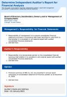 Understanding A Financial Statement Audit Template 73 Report Infographic Ppt Pdf Document