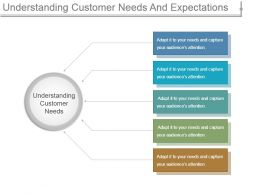 Understanding Customer Needs And Expectations Ppt Sample File