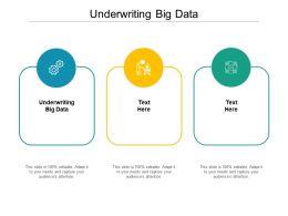 Underwriting Big Data Ppt Powerpoint Presentation Summary Gridlines Cpb