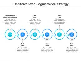 Undifferentiated Segmentation Strategy Ppt Powerpoint Presentation Ideas Design Templates Cpb