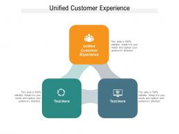 Unified Customer Experience Ppt Powerpoint Presentation Model Summary Cpb