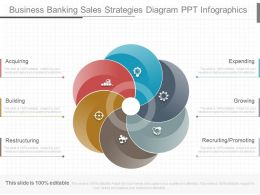 Unique Business Banking Sales Strategies Diagram Ppt Infographics