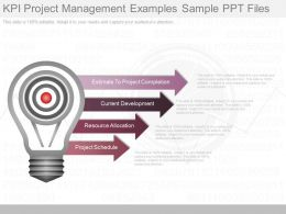 Unique Kpi Project Management Examples Sample Ppt Files