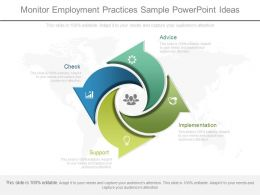 Unique Monitor Employment Practices Sample Powerpoint Ideas