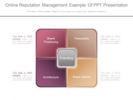 Unique Online Reputation Management Example Of Ppt Presentation