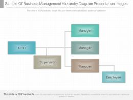 Unique Sample Of Business Management Hierarchy Diagram Presentation Images
