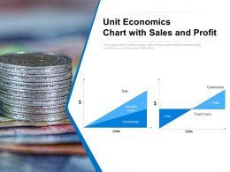 Unit Economics Chart With Sales And Profit