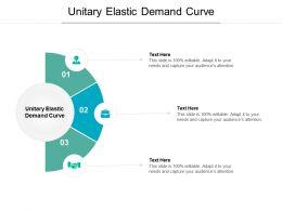 Unitary Elastic Demand Curve Ppt Powerpoint Presentation Professional Cpb