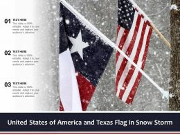 United States Of America And Texas Flag In Snow Storm