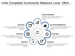 Units Completed Incremental Milestone Level Effort Internal Activities