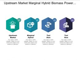 Upstream Market Marginal Hybrid Biomass Power Generation Plant