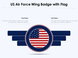 US Air Force Wing Badge With Flag