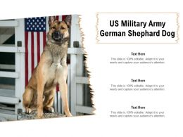 US Military Army German Shephard Dog