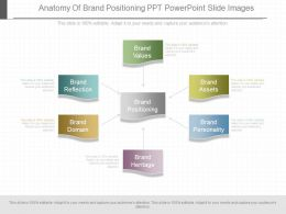 Use Anatomy Of Brand Positioning Ppt Powerpoint Slide Images