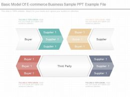 Use Basic Model Of E Commerce Business Sample Ppt Example File