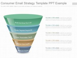 Use Consumer Email Strategy Template Ppt Example