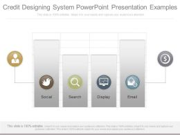 Use Credit Designing System Powerpoint Presentation Examples