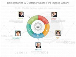 Use Demographics And Customer Needs Ppt Images Gallery