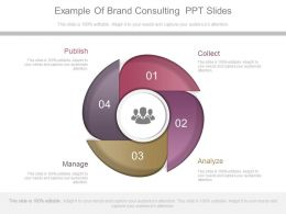 use_example_of_brand_consulting_ppt_slides_Slide01