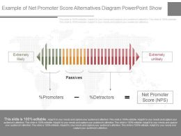 Use Example Of Net Promoter Score Alternatives Diagram Powerpoint Show