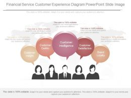 Use Financial Service Customer Experience Diagram Powerpoint Slide Image