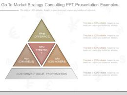 Use Go To Market Strategy Consulting Ppt Presentation Examples