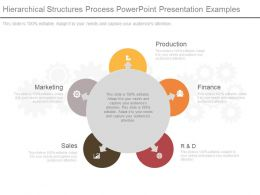 Use Hierarchical Structures Process Powerpoint Presentation Examples