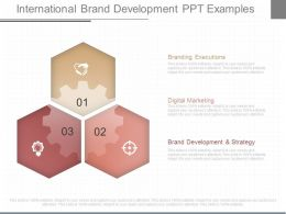 Use International Brand Development Ppt Examples
