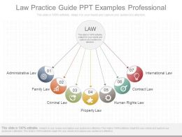 Use Law Practice Guide Ppt Examples Professional