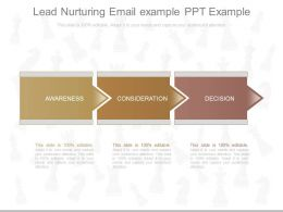 Use Lead Nurturing Email Example Ppt Example