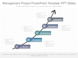 Use Management Project Powerpoint Template Ppt Slides
