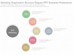 Use Marketing Organization Structure Diagram Ppt Examples Professional