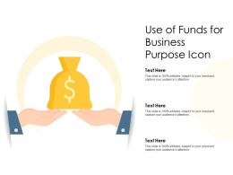 Use Of Funds For Business Purpose Icon