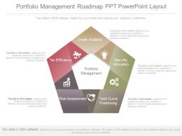 Use Portfolio Management Roadmap Ppt Powerpoint Layout