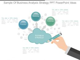 Use Sample Of Business Analysis Strategy Ppt Powerpoint Ideas
