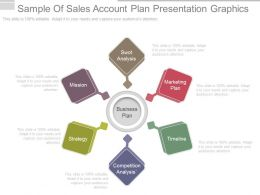 Use Sample Of Sales Account Plan Presentation Graphics