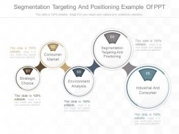 Use Segmentation Targeting And Positioning Example Of Ppt